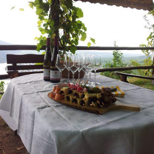 Brettchen mit Käsespießen, Lyoner, Radieschen, Frikadellen dazu Wein, mit Blick auf Weinreben und einen Fluss